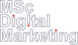 MSc Digital Marketing SKEMA BS